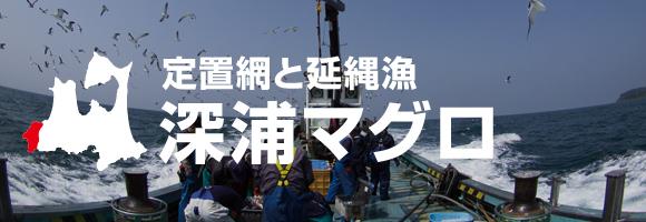 定置網と延縄漁 深浦マグロ