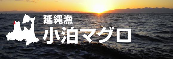 ○○○ 小泊マグロ